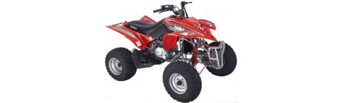 ATV Parts Shineray