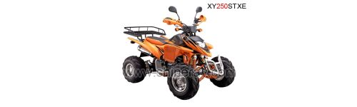 ATV Shineray 250cc XY250STXE